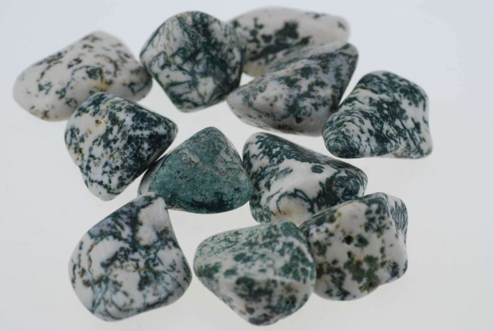 Facts About Tree Agate