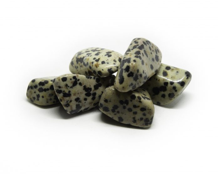 Facts About dalmatian stone